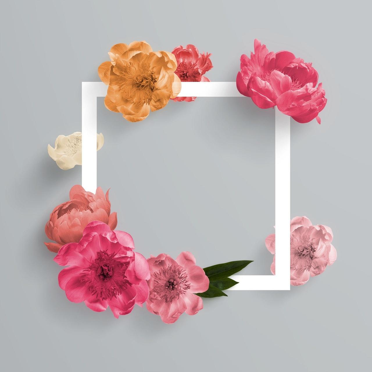 biała ramka z kwiatami